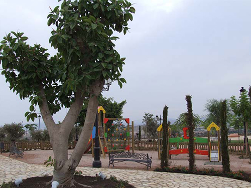 jardineria-y-paisajismo1
