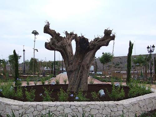 jardineria-y-paisajismo3